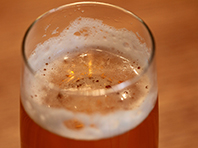 Пиво, точнее хмель, защитит от рака груди, обещают онкологи