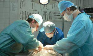 Восстановительный период после операции зависит от работы иммунных клеток