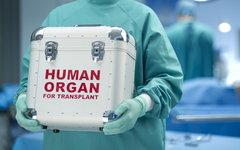 В России появится электронный регистр донорских органов