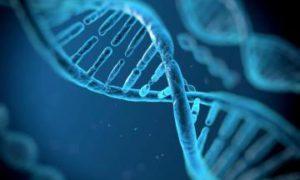 Китайские ученые получили разрешение на клинические исследования CRISPR/Cas9