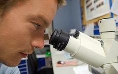 Российские ученые создали биоразлагаемые наночастицы для борьбы с раком