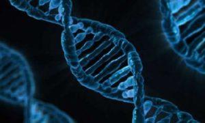 Ученые смогли вылечить редкую генетическую патологию