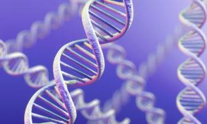 Генетики занялись изучением хронических болезней