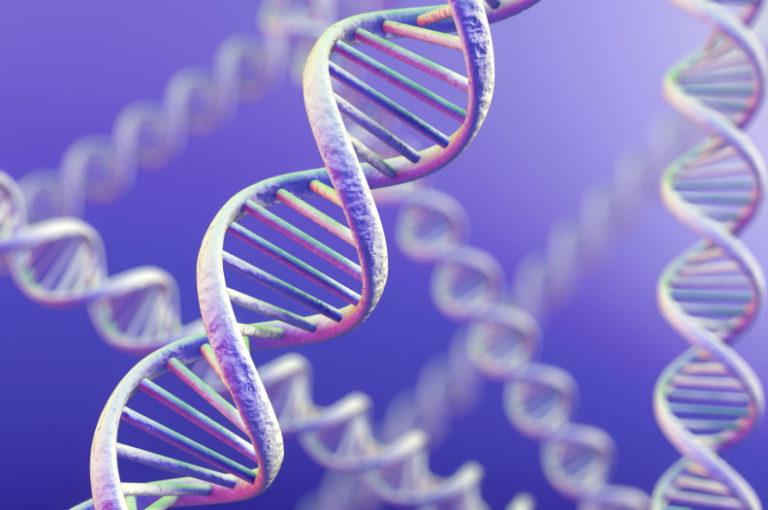 Генетика: удивительные факты