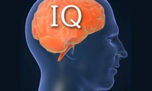 Уровень IQ оказался связан с продолжительностью жизни человека