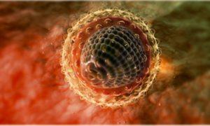 Что надо делать если вам поставили диагноз – гепатит С
