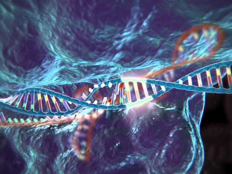 В Китае впервые применили технологию CRISPR в лечении человека