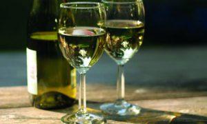 Регулярное потребление белого сухого вина как фактор риска развития меланомы