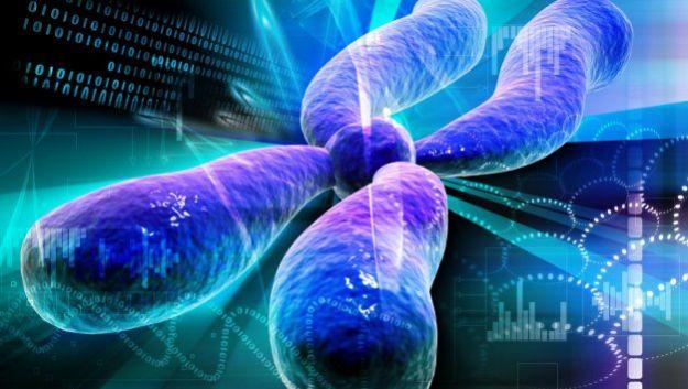 Ученые обнаружили в хромосомах новое вещество