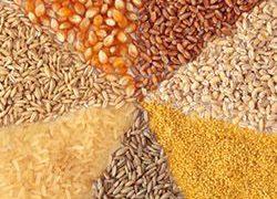 Какие продукты предотвращают рак