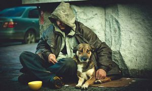 На Гавайях будет рассмотрен законопроект о признании бездомности болезнью
