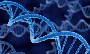 Повышенный риск рака передается по наследству