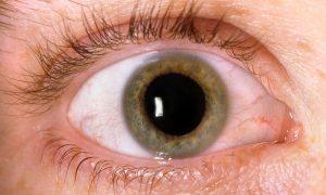 Японские ученые создали очки для быстрой диагностики глаукомы