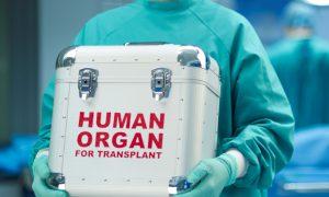 Трансплантация органов повышает риск онкологии