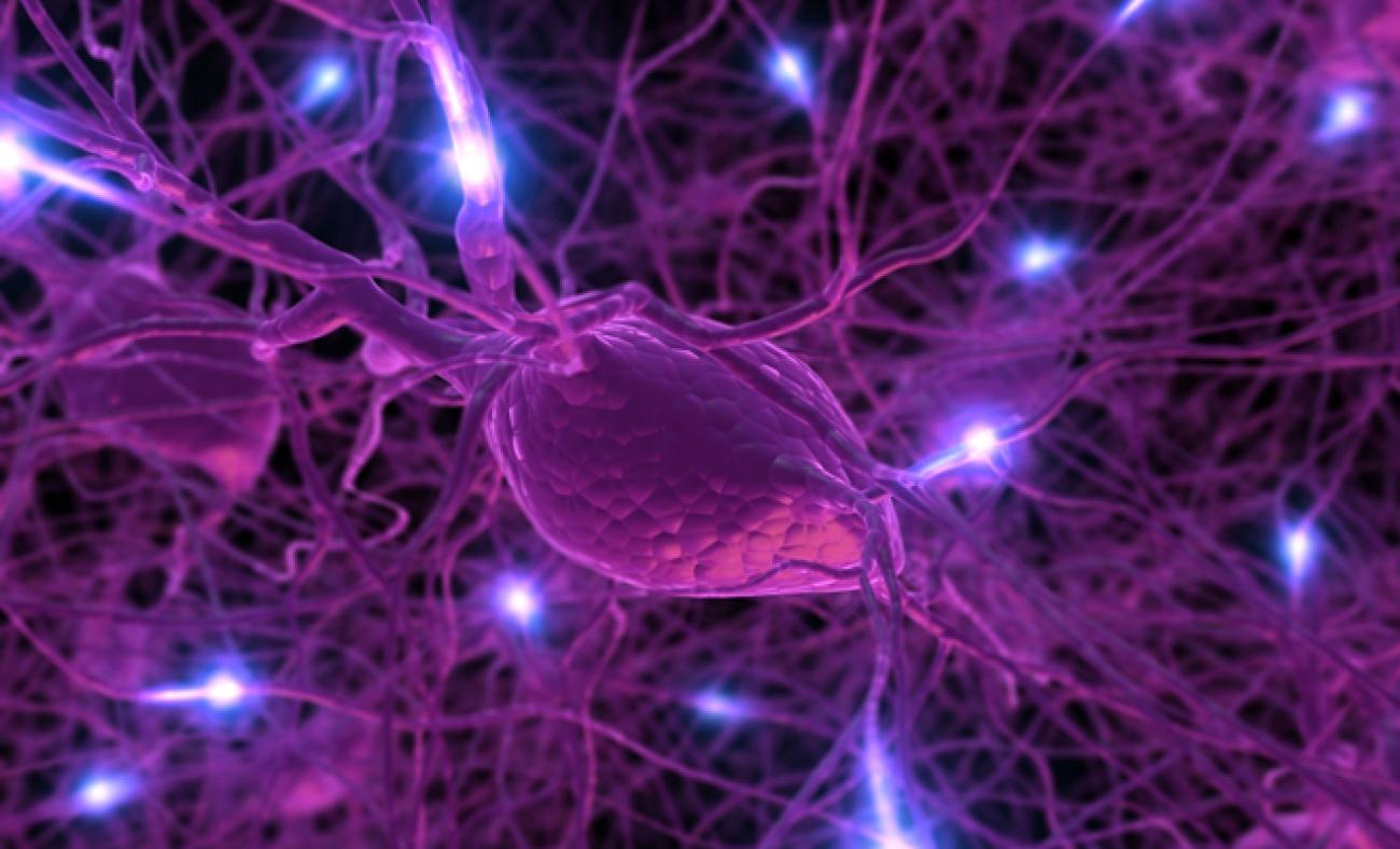 Нарушение ольфакторной функции как предиктор риска ранней смерти
