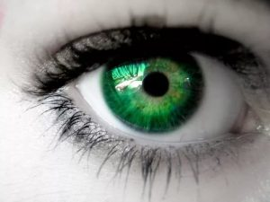 По глазам можно определить все болезни