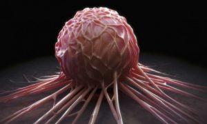 Ученые разрабатывают новый инструмент для выявления рака
