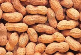 Аллергию на арахис лечат арахисом