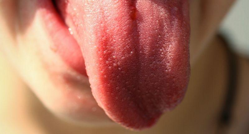 У языка нашли «шестое чувство»