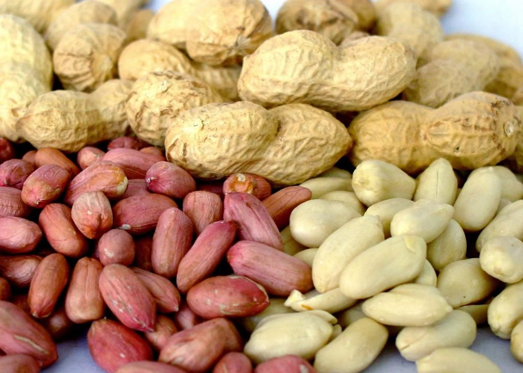 Исследователи победили аллергию на арахис
