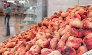 Турецкий импорт увеличил поток зараженной сельхозпродукции в Смоленскую область