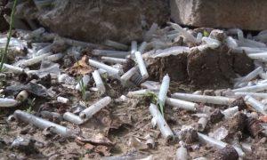 Возле деревни Ясенной вблизи Смоленска происходит экологическая катастрофа?