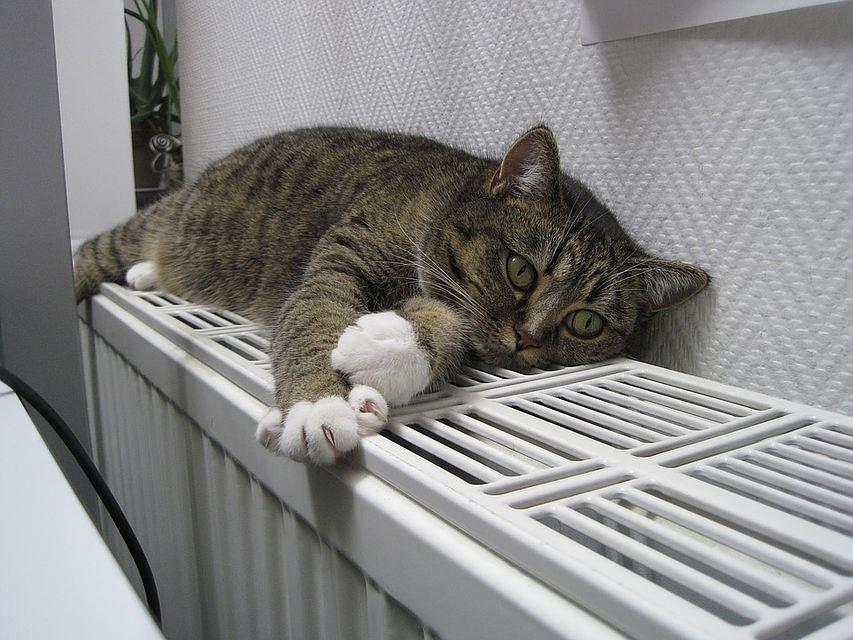 Батареи в домах смолян потеплеют к среде
