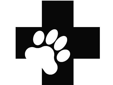 О приостановке реализации ряда серий лекарственных средств для ветеринарного применения
