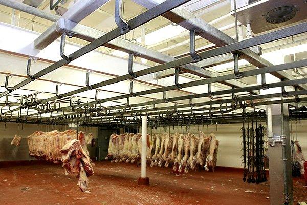 Вяземский мясокомбинат заподозрили в использовании бруцеллёзного мяса