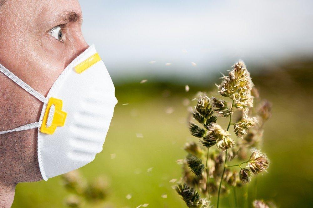 Аллергия на пыльцу растений: симптомы и пища, которую следует избегать