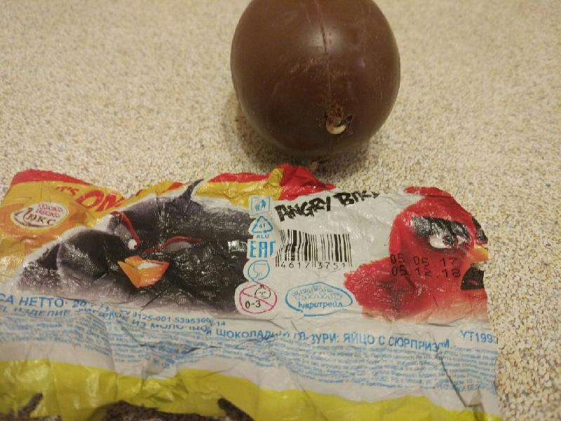 Маленький смолянин нашел в шоколадном «киндере» червяка