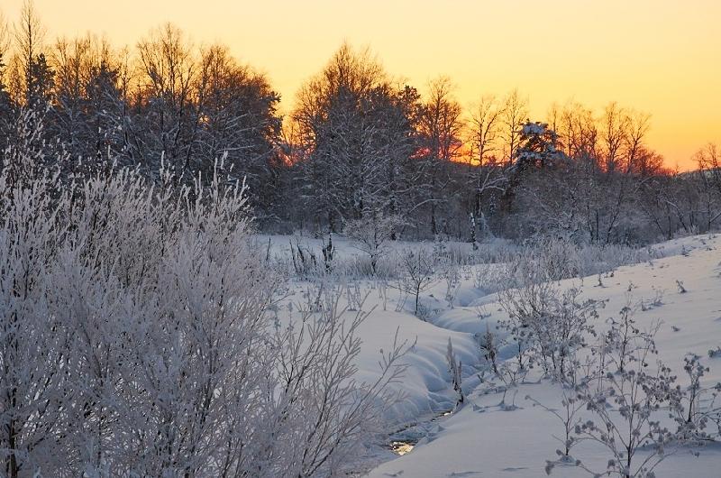 В Смоленской области объявлен «желтый» уровень опасности на 1 февраля
