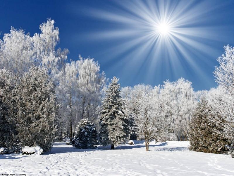 Какая погода ждет смолян в последний день февраля