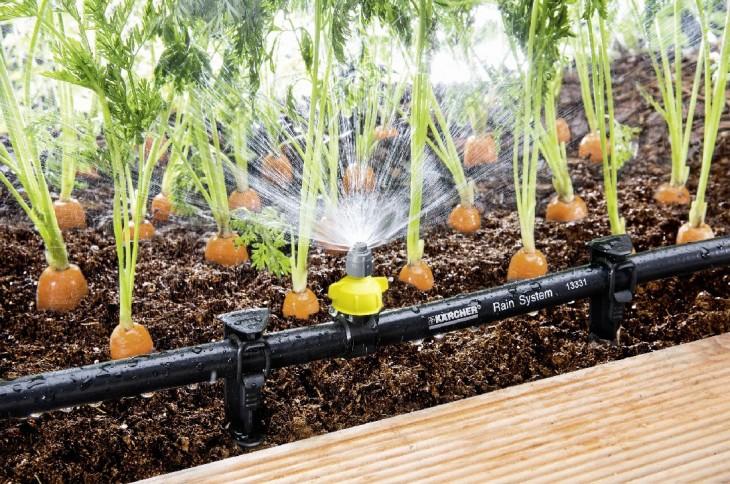 Системы поливы газона