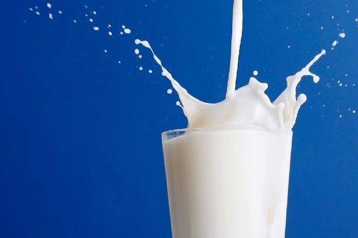 С 15 марта Россельхознадзор запретит ввоз в Россию молока и сливок из Белоруссии