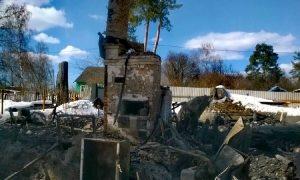 В Смоленской области собака спасла хозяев во время пожара и погибла