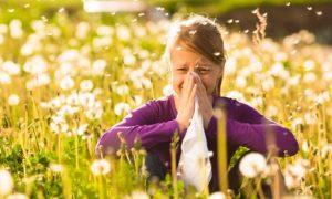 Способы облегчения симптомов аллергии в период цветения