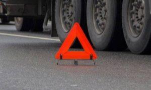 В Смоленской области на трассе М1 фура задним ходом сбила пешехода