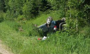 В Смоленской области водитель иномарки скончался при вылете в кювет
