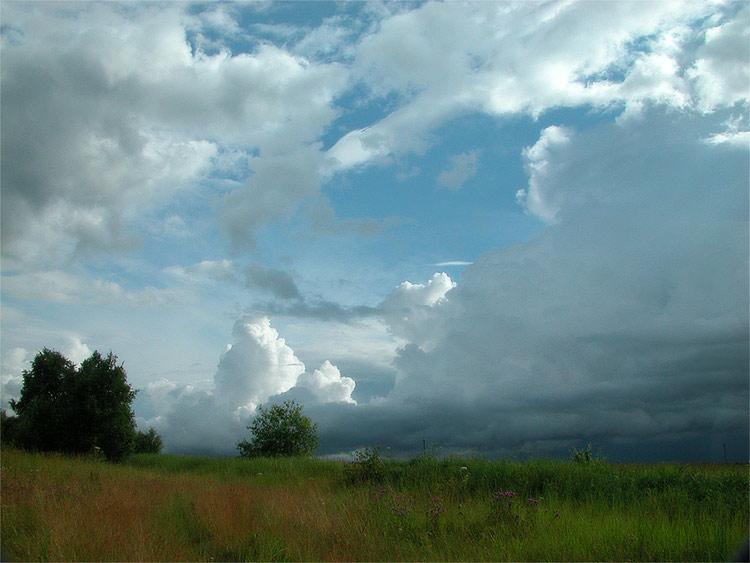 Какая погода ждет смолян 9 июня