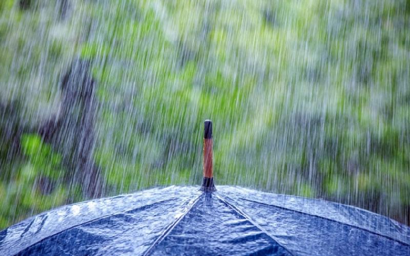 Гидрометцентр предупреждает смолян о дождях с грозами, граде и сильном ветре