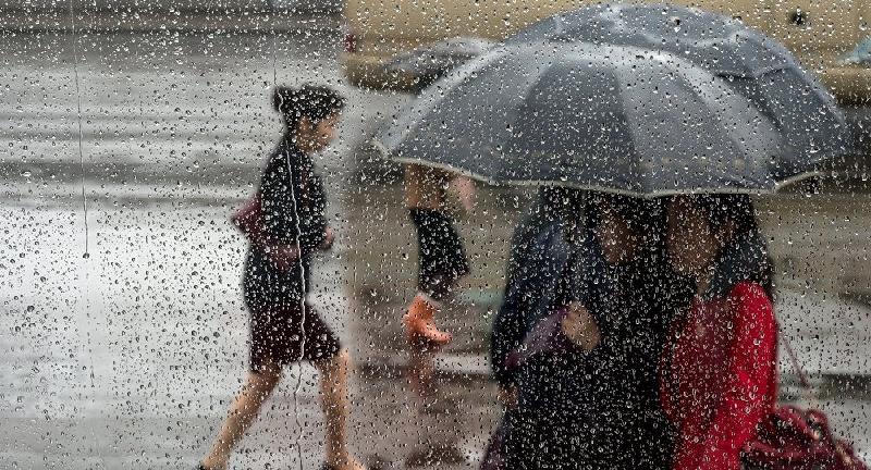 Какая погода ждет смолян 5 июля