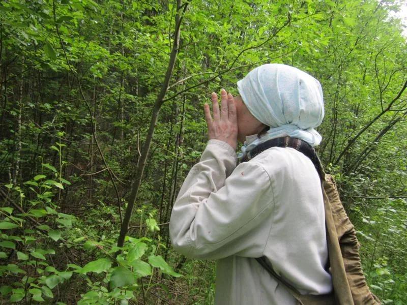 В Смоленской области в лесу потерялась 43-летняя женщина