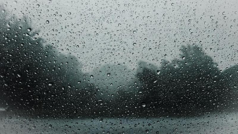Синоптики прогнозируют сильные дожди с грозами в Смоленской области