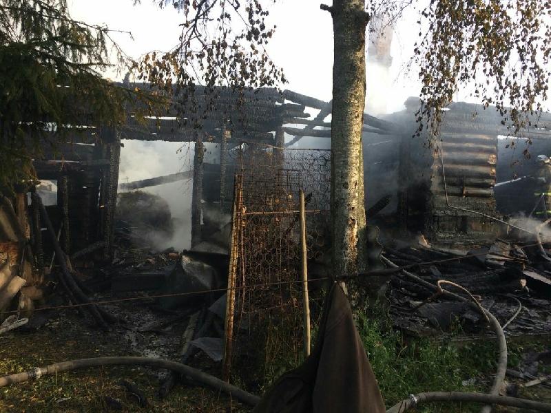 В Смоленской области в сгоревшем доме обнаружили тела мужчин