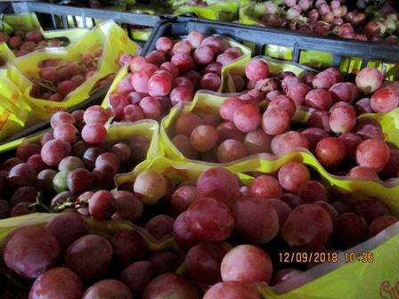 В Смоленскую область пытались ввезти зараженный виноград