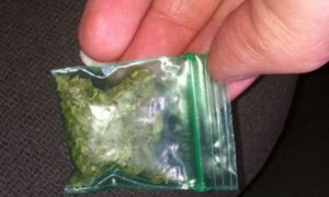 В Смоленской области полицейский нашел наркотики в… бане