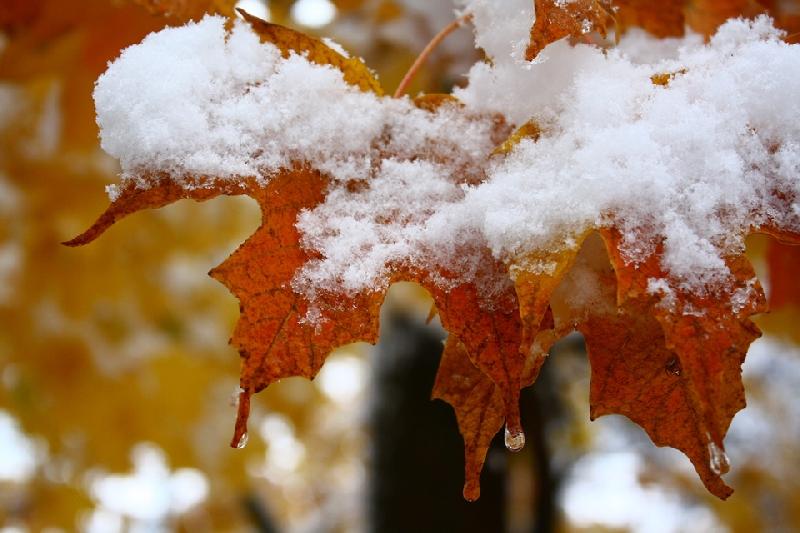 Как изменится погода в Смоленской области 27 октября