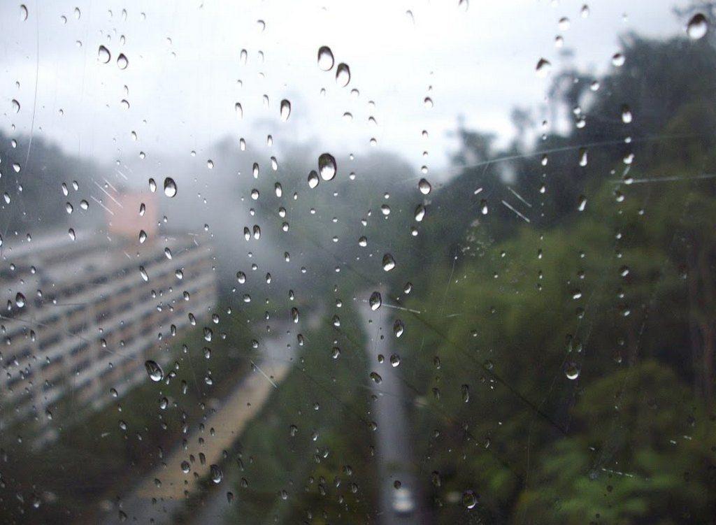В Смоленске в среду будет дождливо и ветрено