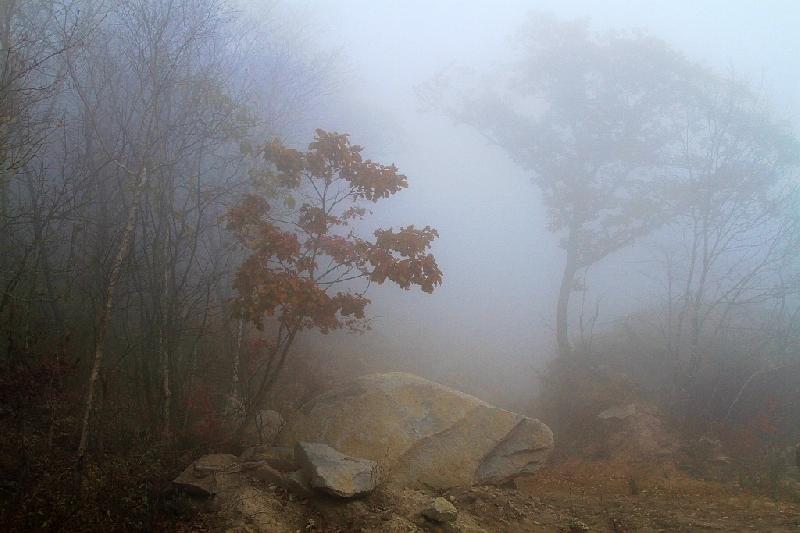 Синоптики рассказали, какая погода ждет смолян 9 ноября